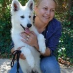 Berger blanc suisse a donner