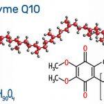 Avantages de la coenzyme Q10 pour les chiens: preuves scientifiques