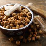 Nourriture sèche pour chien: 4 raisons de l'éviter