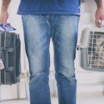 Le transfert en toute sécurité des animaux vers un autre pays