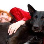Quelles sont les meilleures races de chiens pour les personnes souffrant d'anxiété?