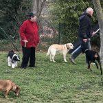 Résidence canine avec ou sans cages?