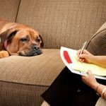 Ethologue Qu'est-ce que l'éthologie canine ?