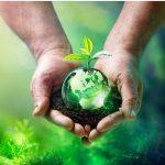 L'équilibre écologique : qu'est-ce que c'est et quels facteurs l'altèrent