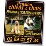 Chenil pension chien ille et vilaine