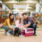 5 questions à se poser avant d'adopter un chien