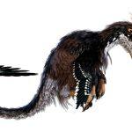 Ubirajara jubatus : le dinosaure à crinière
